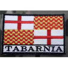 PATCH BANDERA TABARNIA...